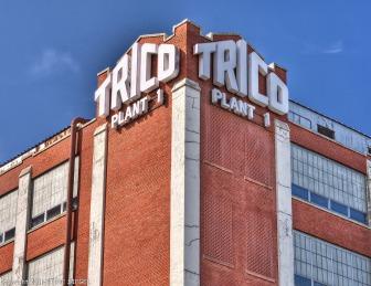 Save Trico